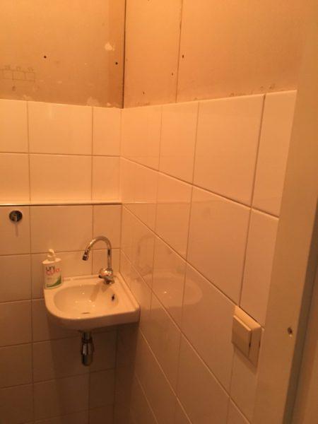 badkamer steenstrips tegels